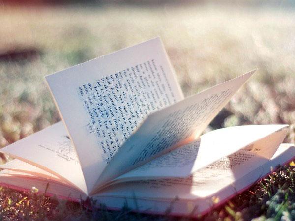 Дневник моего страха читать